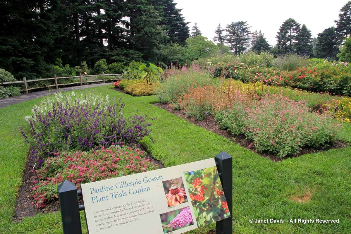 NYBG-Pauline Gillespie Gosset Plant Trials Garden