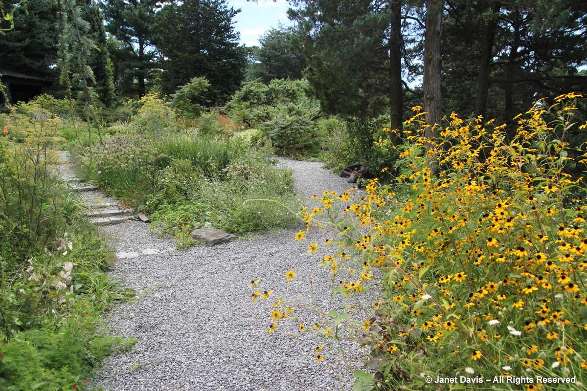 wild-garden-wave-hill-august1