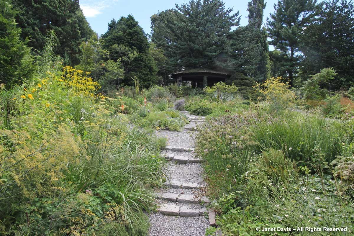 wild-garden-wave-hill-august2
