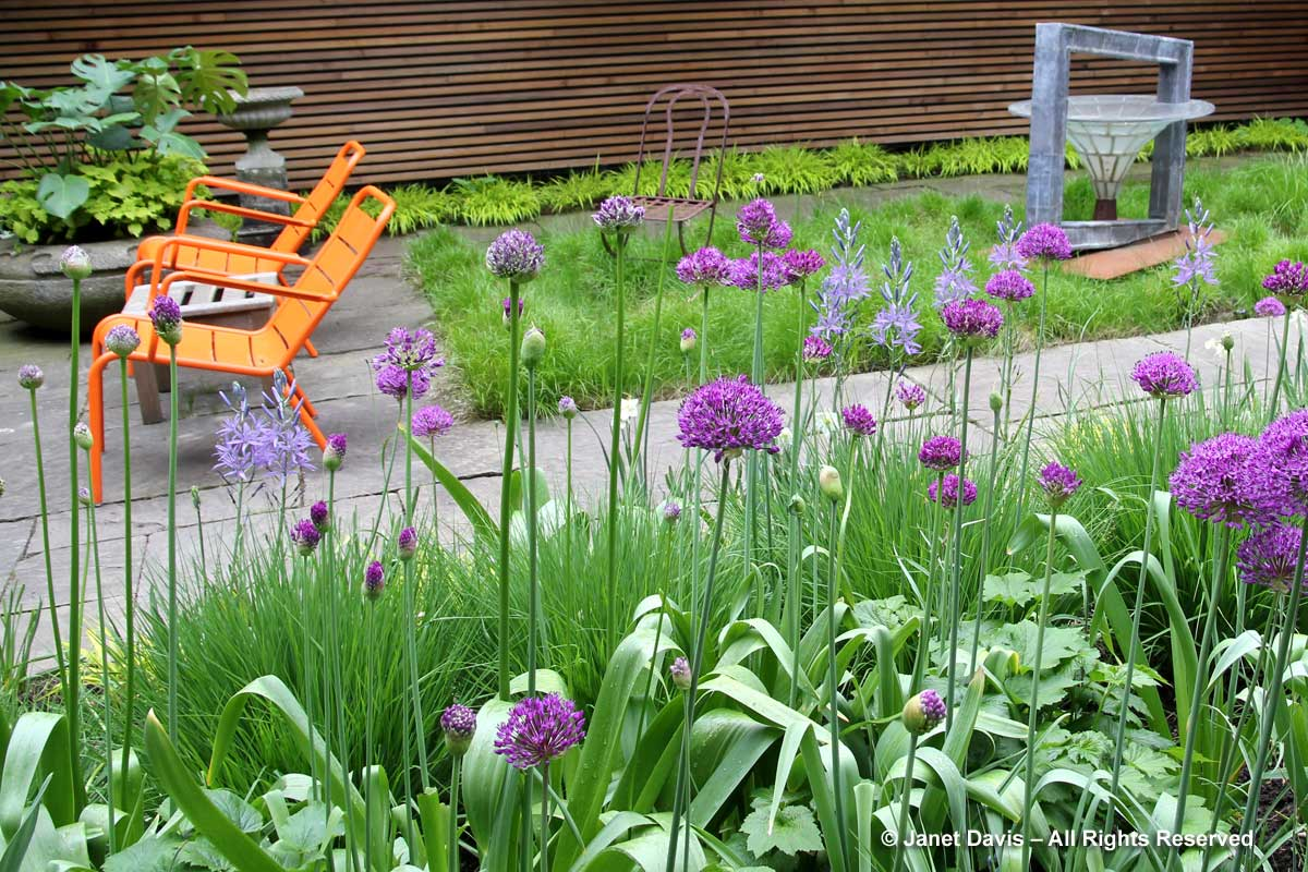 5-orange-chairs-purple-flowers