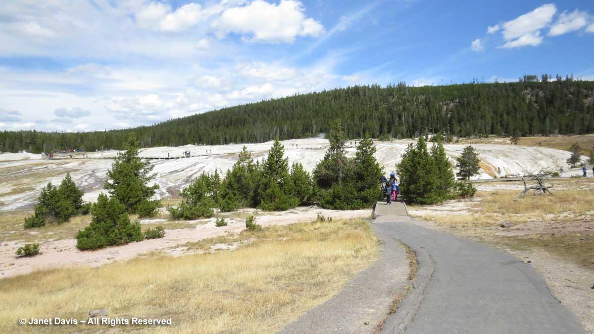 12-yellowstone-upper-geyser-basin