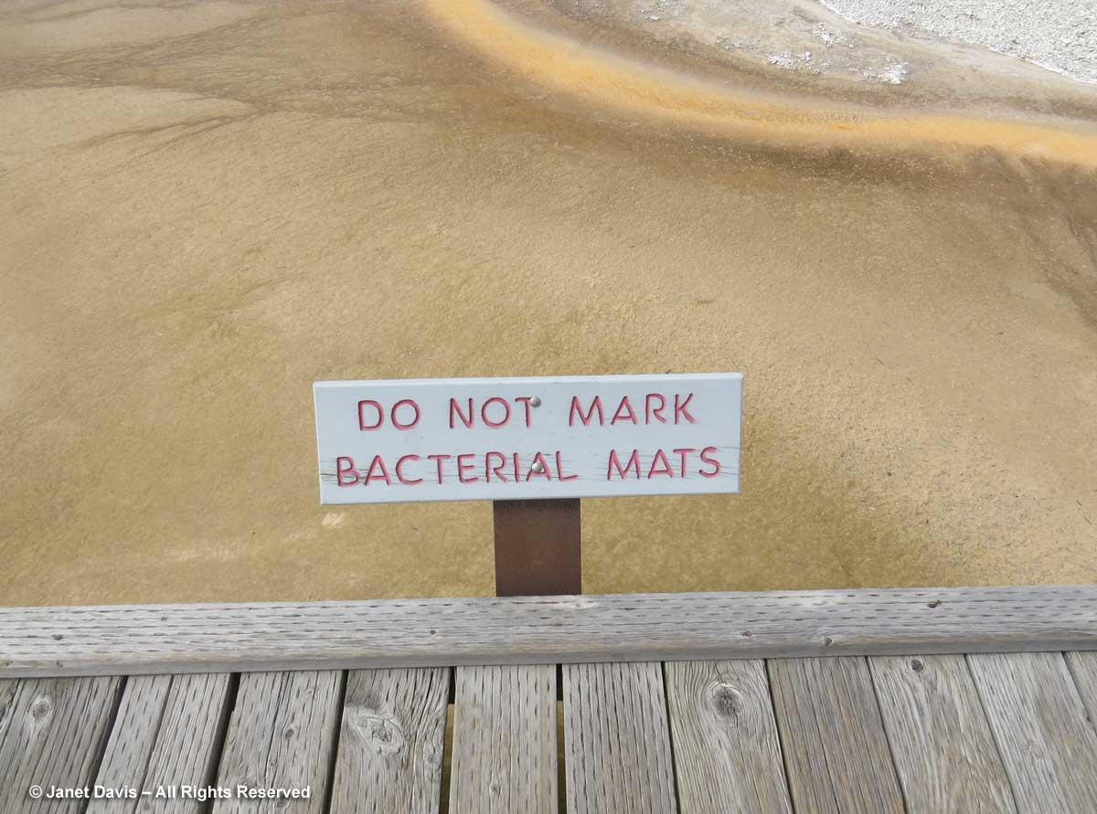 25-yellowstone-bacterial-mats-sign