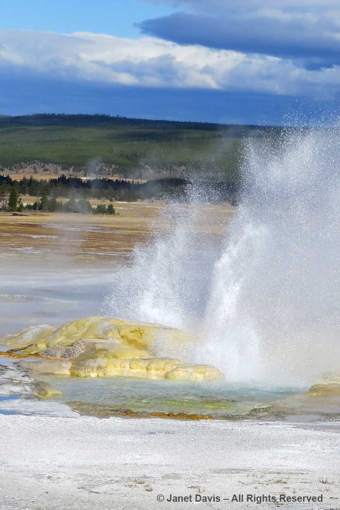44-clepsydra-geyser-yellowstone
