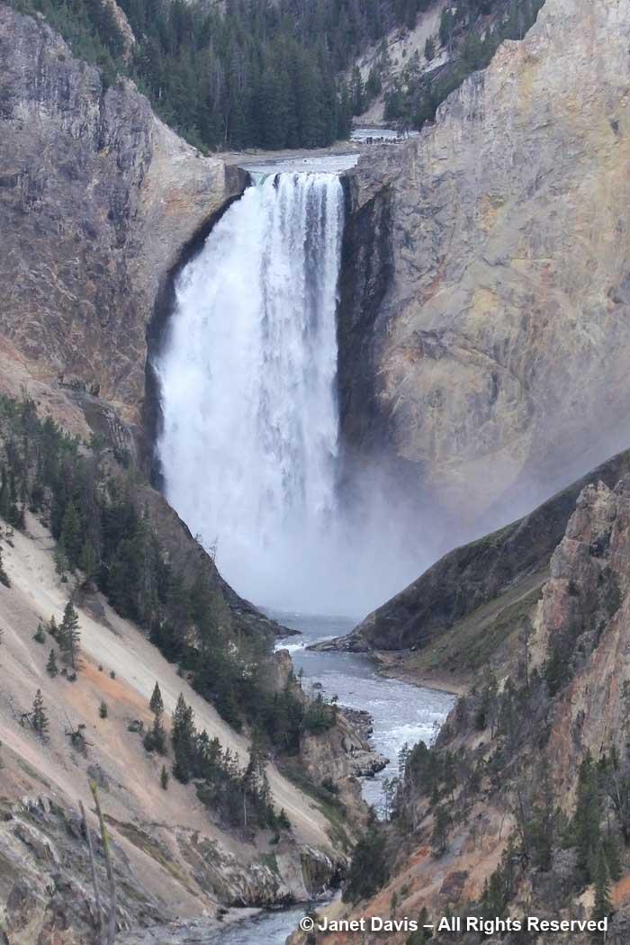 63-yellowstone-lower-falls