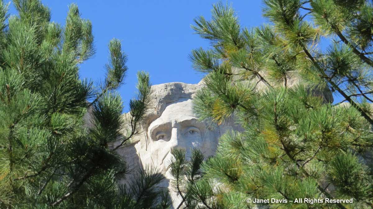 Abraham Lincoln-Mount Rushmore-Ponderosa pines
