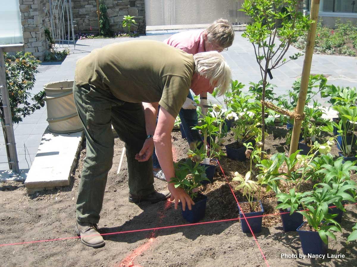 Piet Oudolf Placing Plants-Toronto Botanical Garden