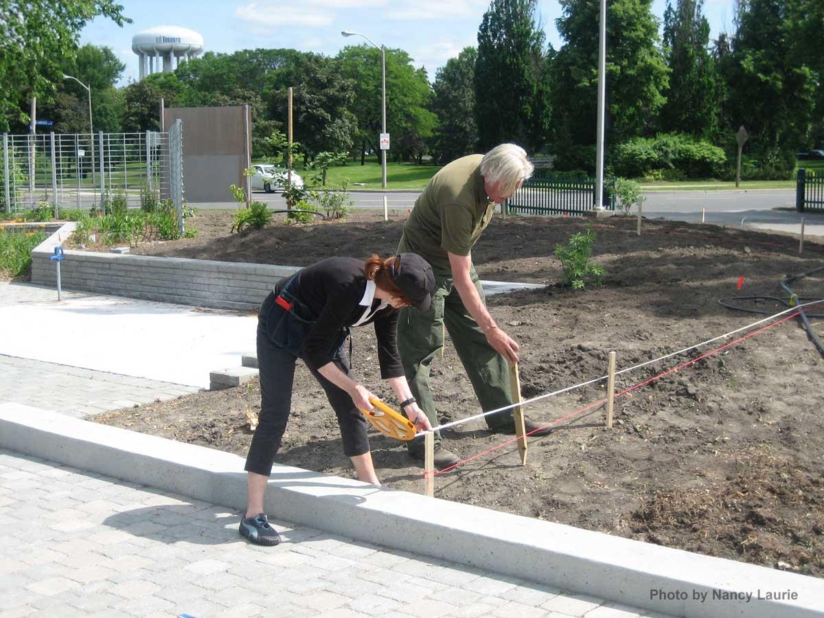Constructon-Toronto Botanical Garden-Piet Oudolf Checking Grid.J