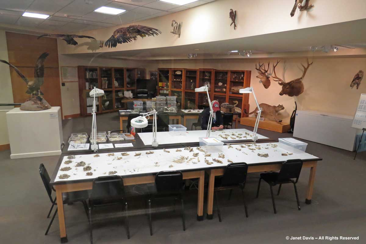 Draper Museum Living Laboratory Exhibit
