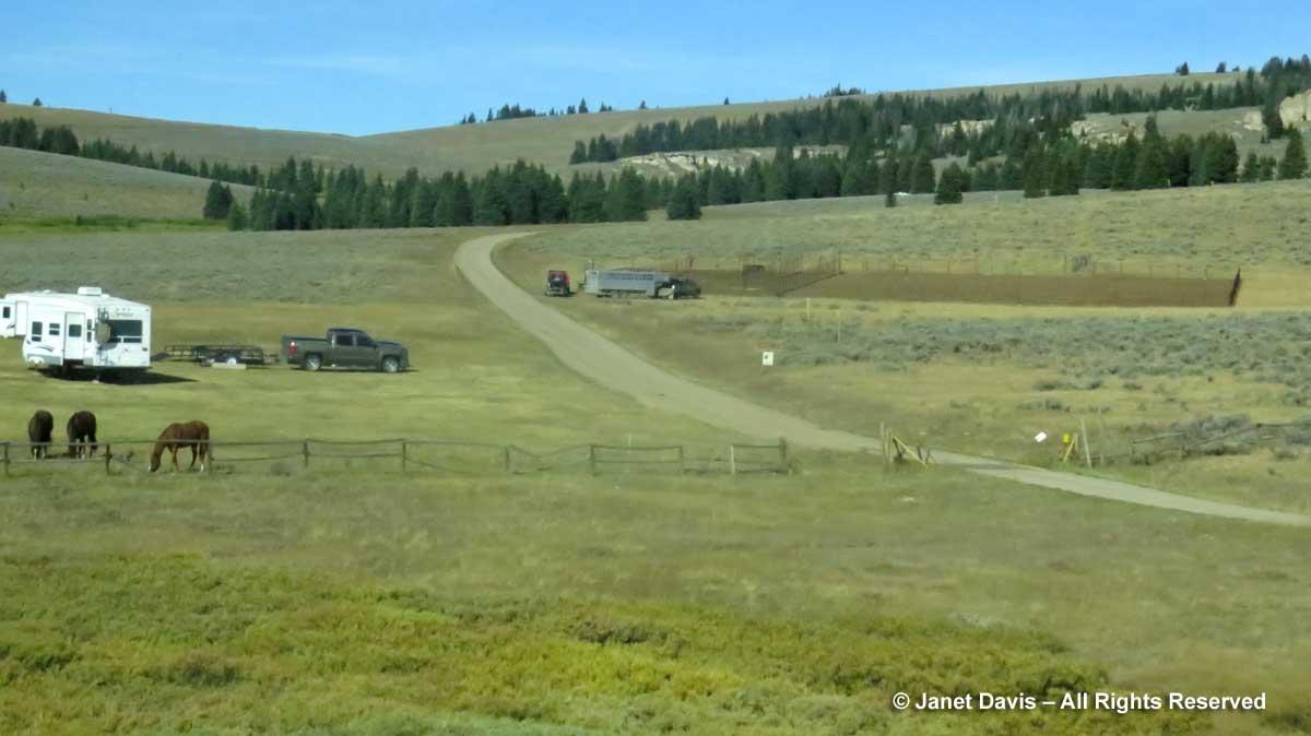 Grazing land-Bighorn Mountains
