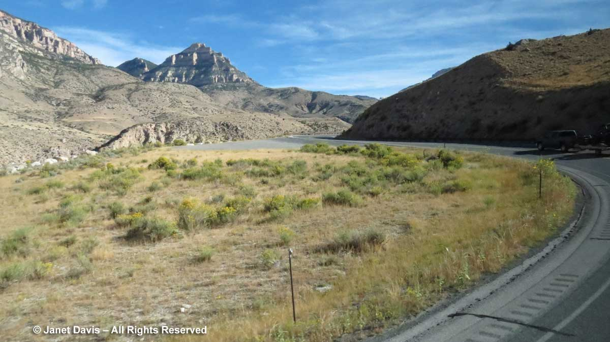 Highway 14-Shell Canyon-Big Horn Mountains
