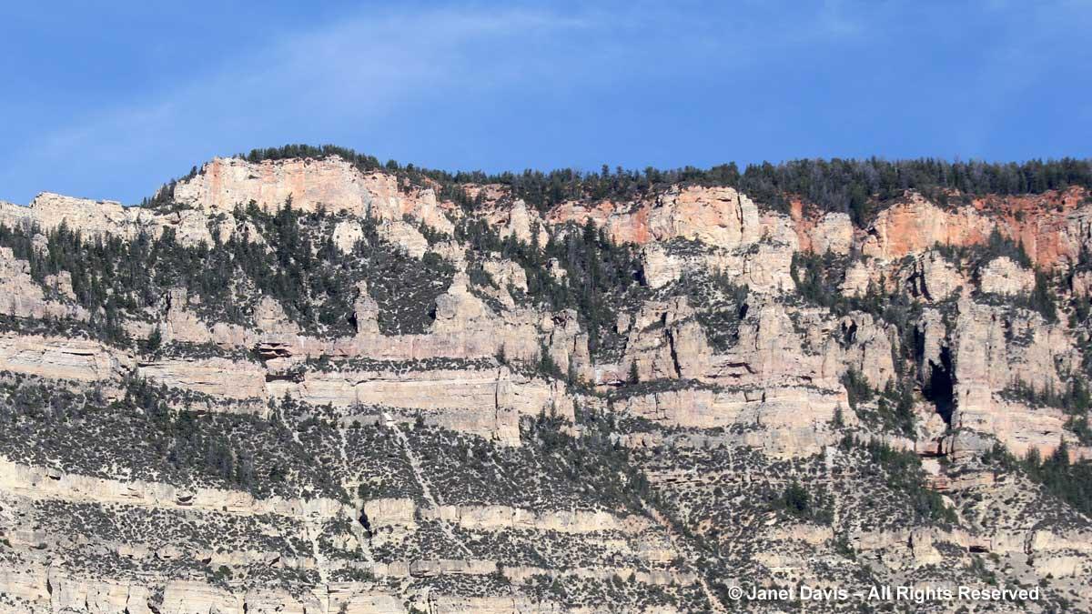 Madison group limestones-monocline