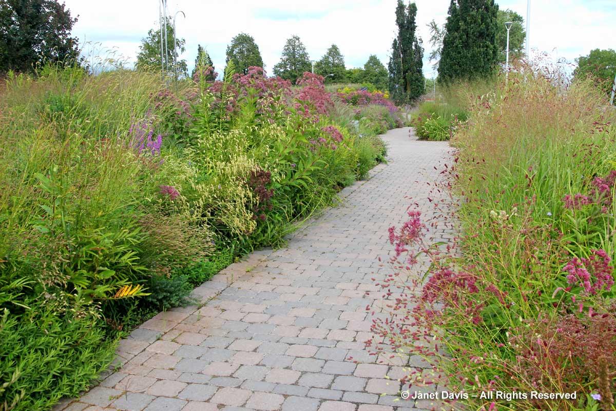 Piet Oudolf Entry Garden-Toronto Botanical Garden-September