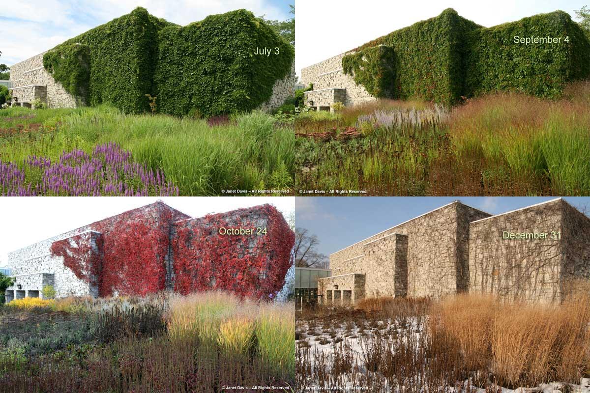 Piet Oudolf entry border-seasonal views-Toronto Botanical Garden