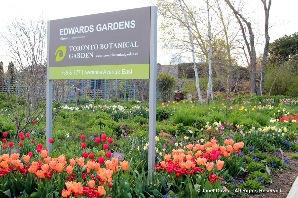 Seasonal 1c-Spring-Piet Oudolf Entry Garden-Toronto Botanical Garden