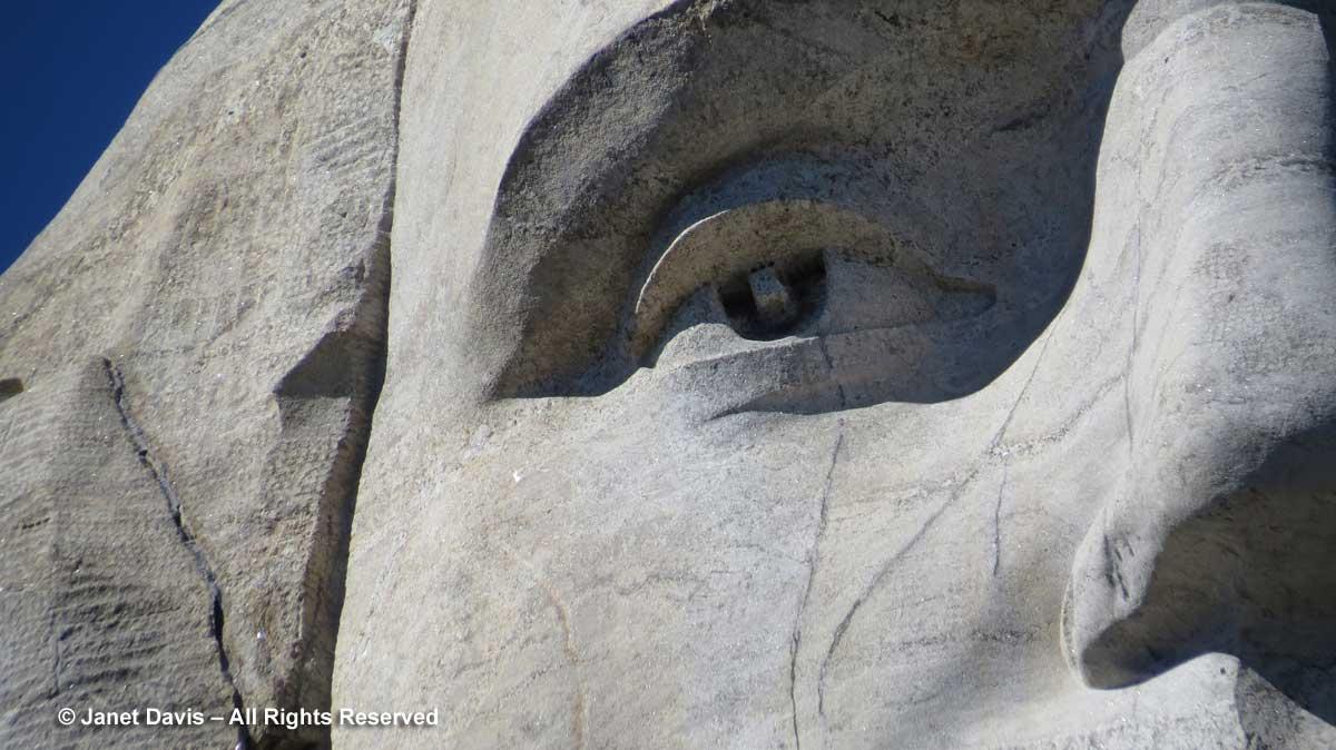 Washington's-eye