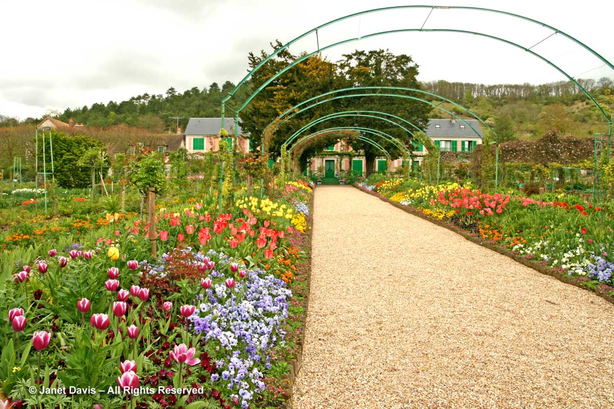 Giverny-Monet's Garden-Allee & House-Clos Normand-spring tulips blocks