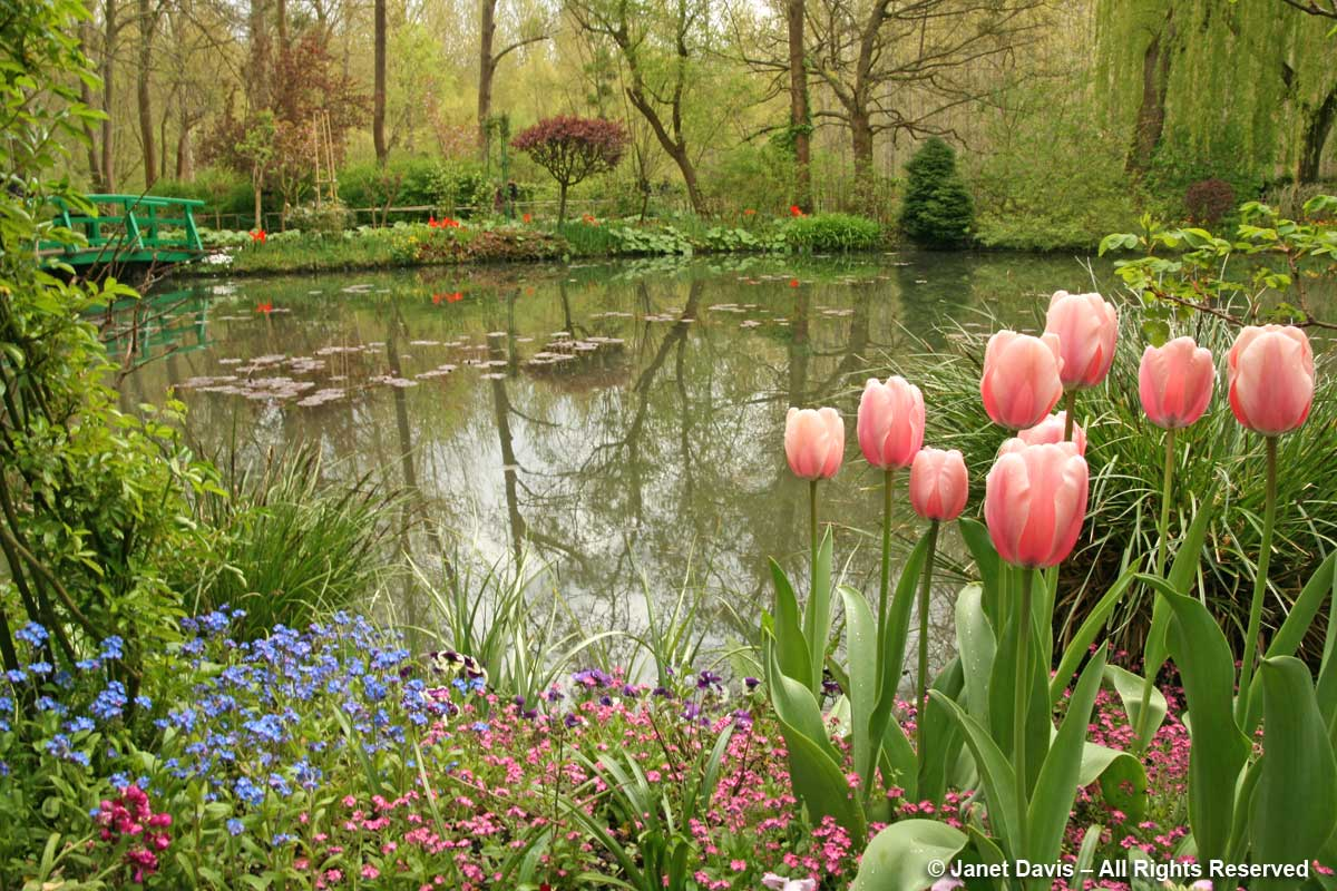 Giverny-Monet's Garden-Pond-Foreground interest