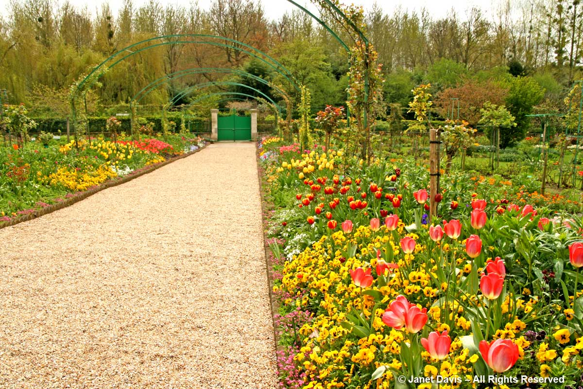 Giverny-Monet's Garden-Tulip Colour Drifts-Grand Allee
