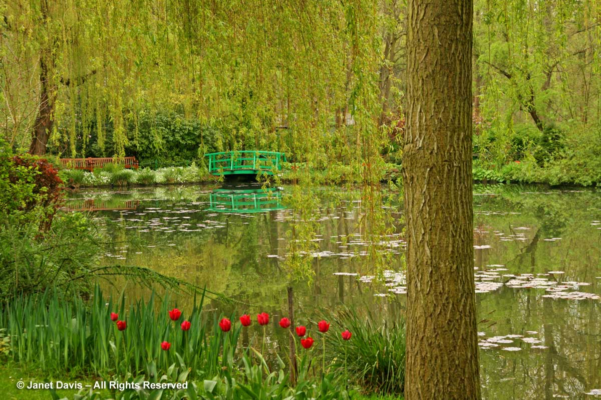 Giverny-Monet's Garden-lily pond & bridge-spring