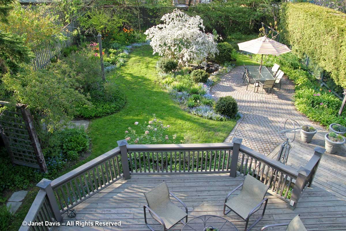Back garden-upper view-Janet Davis-Toronto