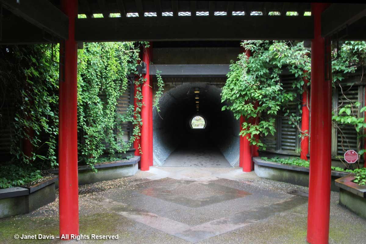 David Lam Asian Garden-Tunnel under Marine Drive-UBC Botanical
