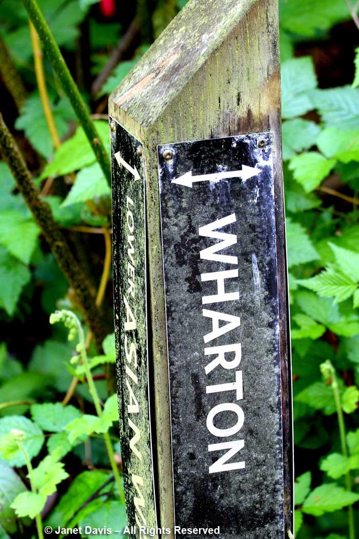 Peter Wharton-path sign-David-Lam Asian Garden-UBC Botanical