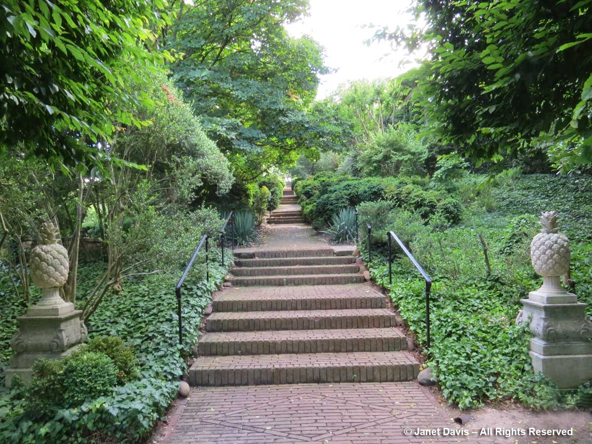 Boxwood Walk-Dumbarton Oaks