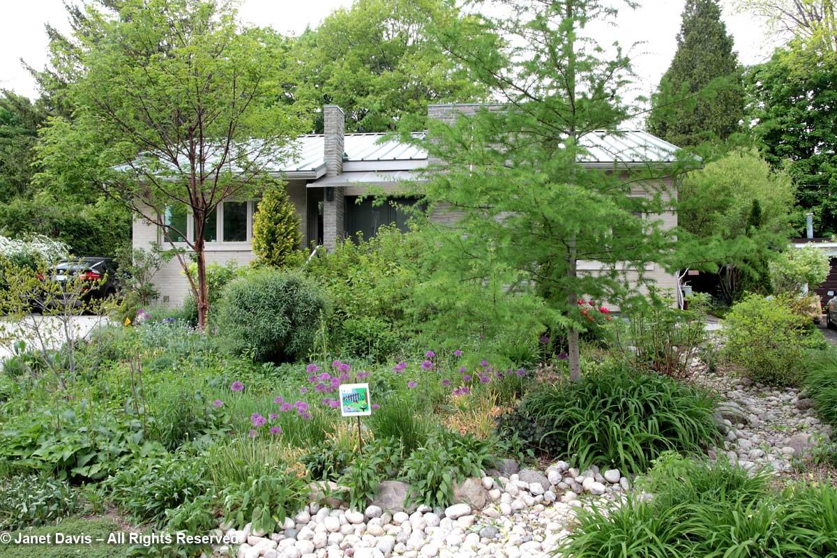 Siri Luckow-Front garden