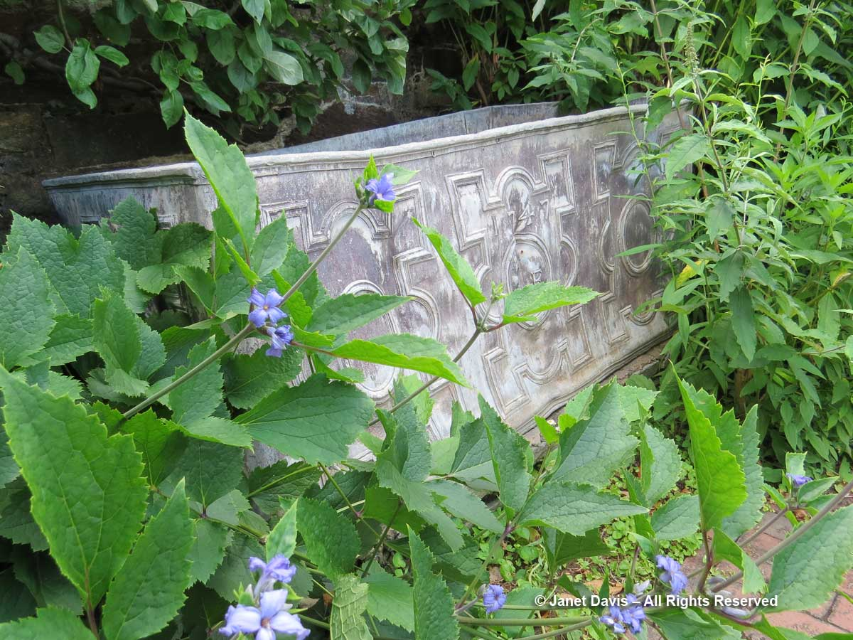 Trough-Kichen Garden-Dumbarton Oaks