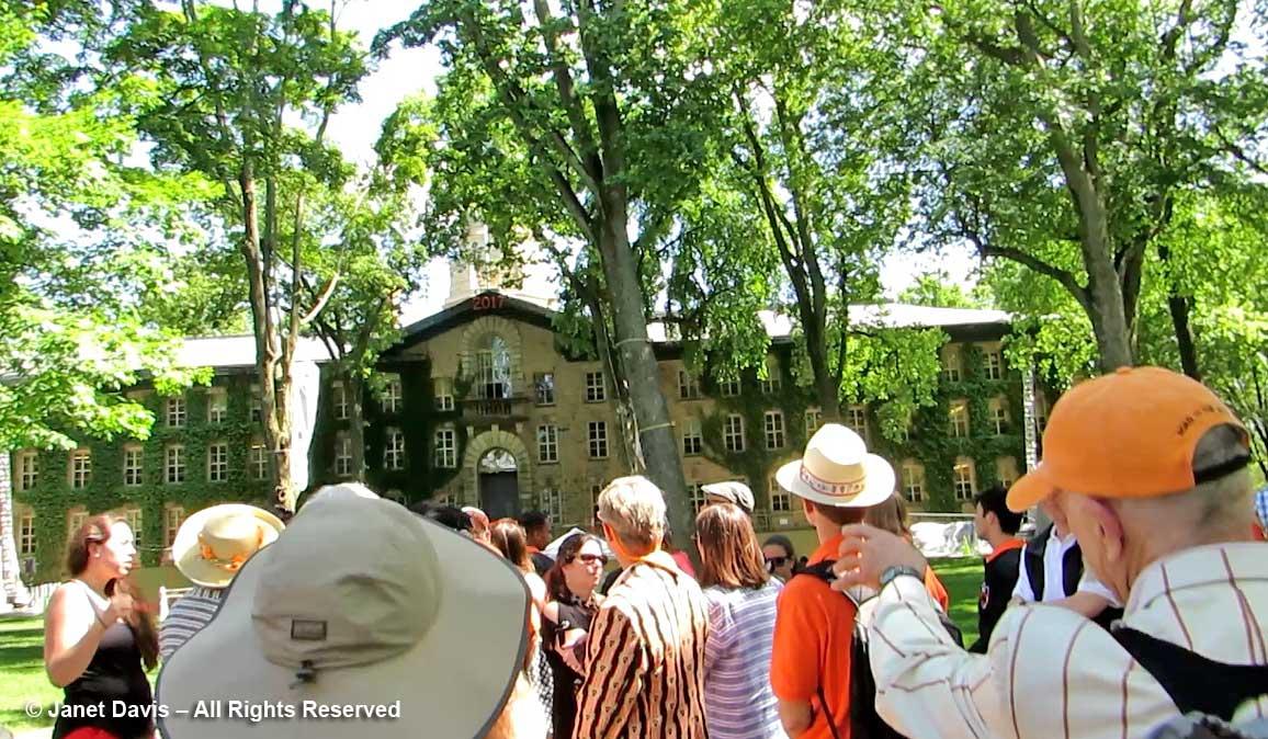 Ulmus americana-American elms-Nassau Hall