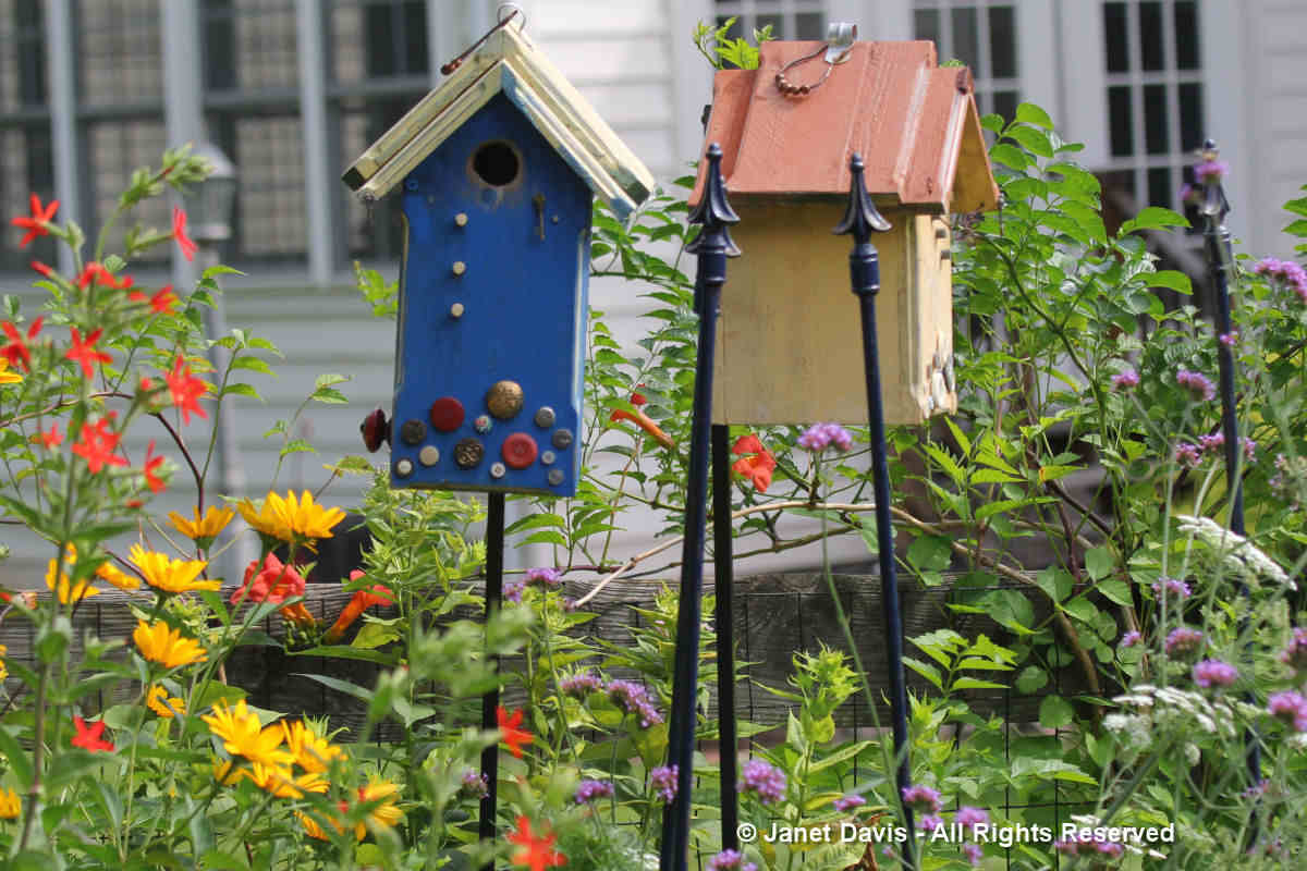 Birdhouses-Tammy Schmitt