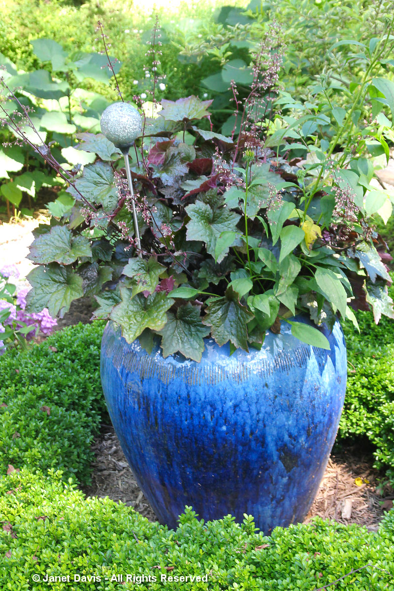Blue Pot 2-Linda Hostetler