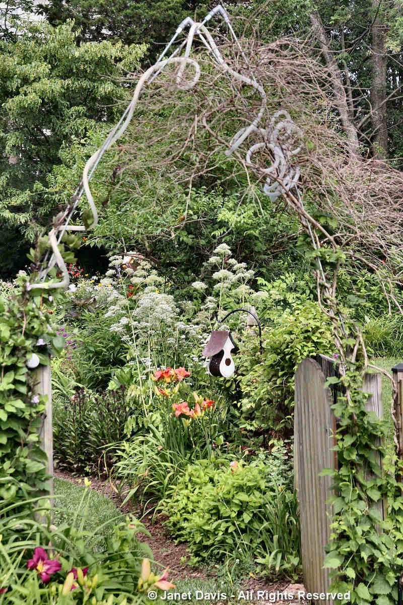 Garden arch-Tammy Schmitt