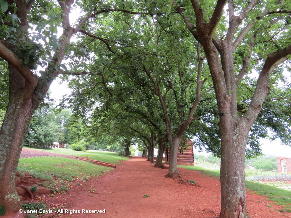 Mulberry Row2-Monticello