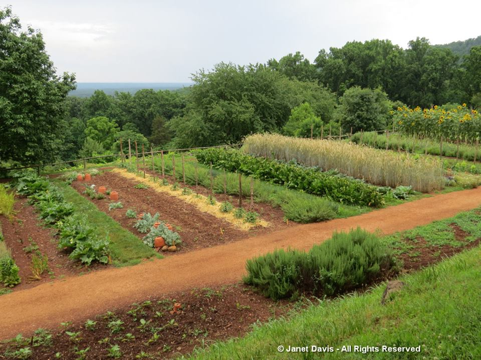 Vegetable Garden-Monticello