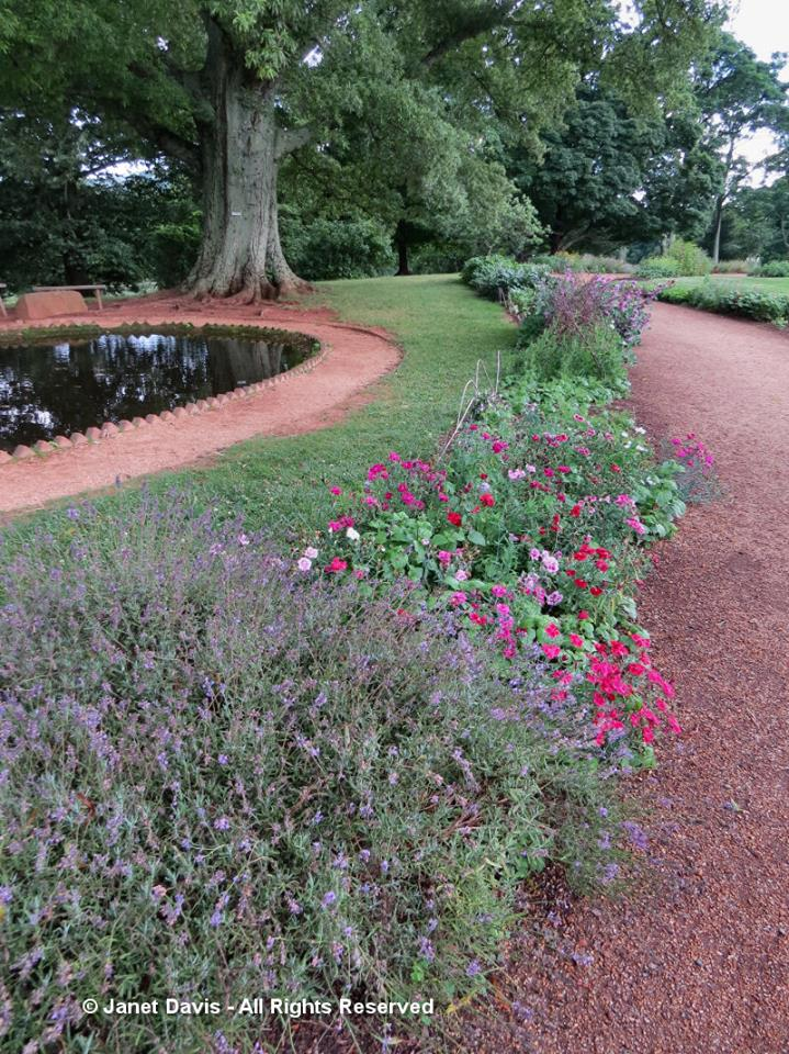 Winding Walk flower garden-Monticello