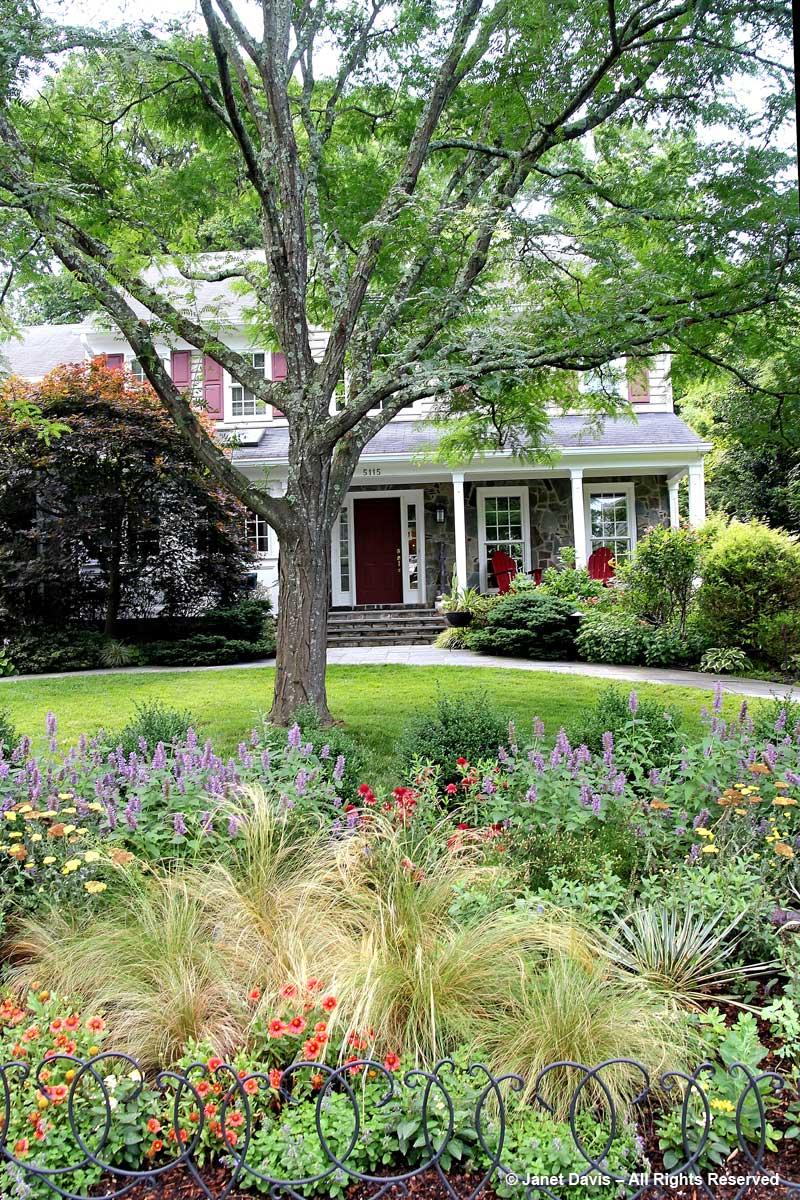Barbara Katz-Street Garden & House