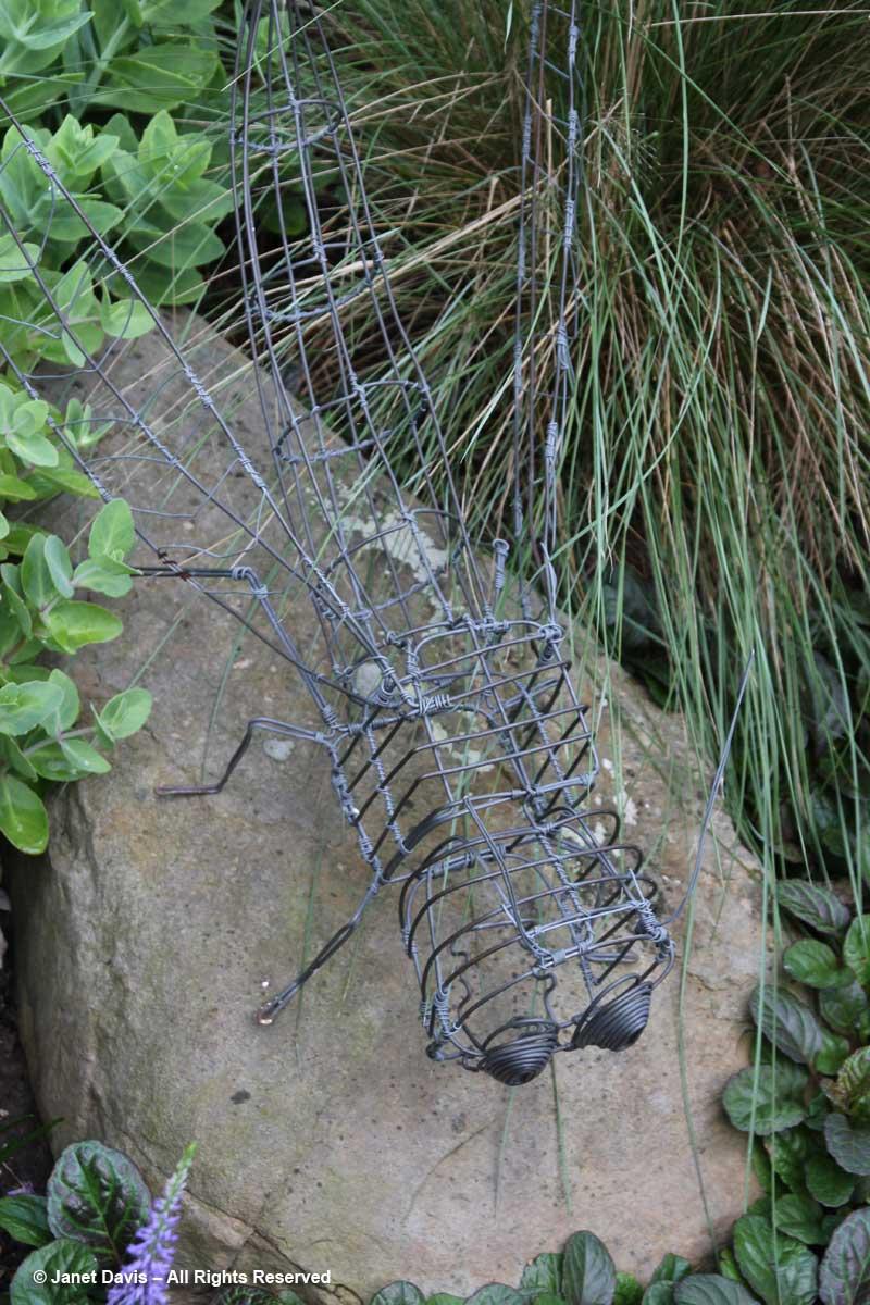 Grasshopper Art-Barbara Katz