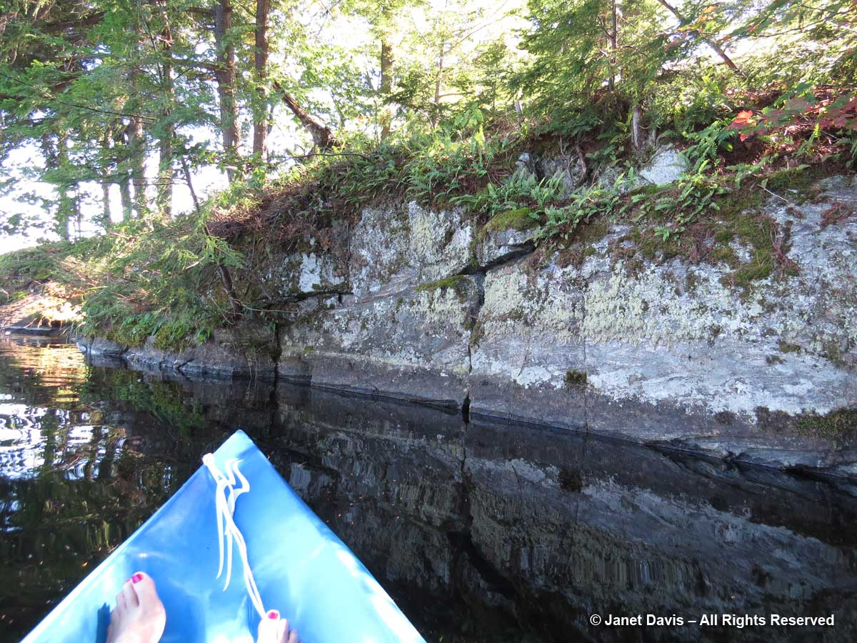 Natural shoreline-Lake Muskoka-kayak