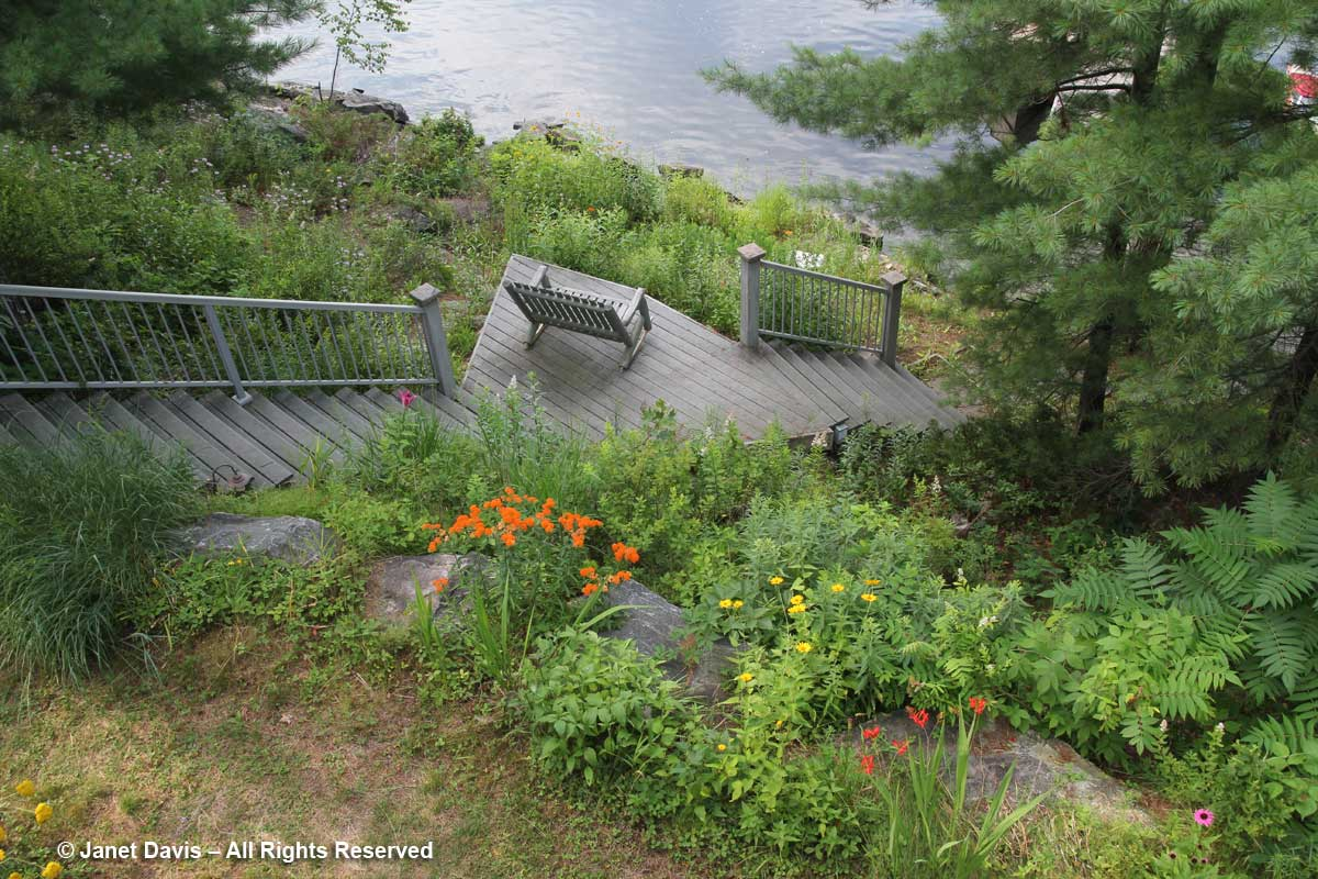 Slope to Lake Muskoka-Janet Davis cottage