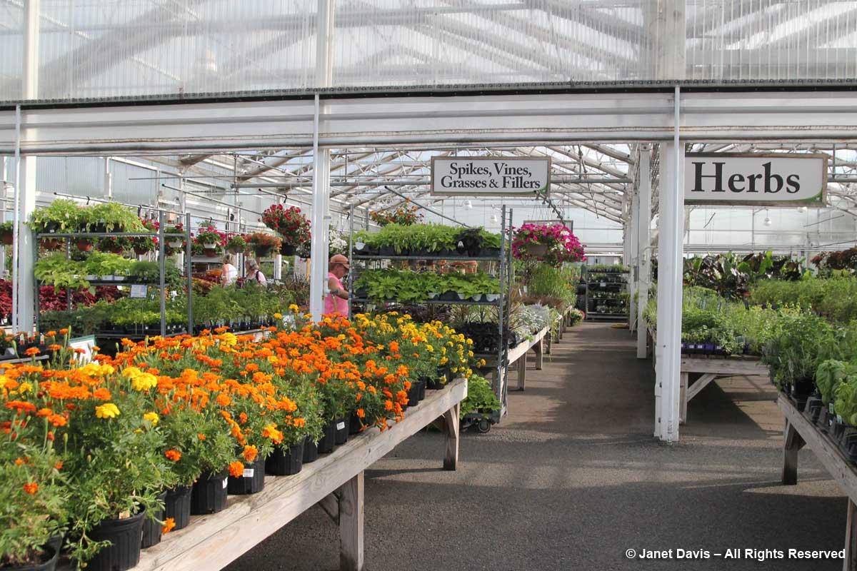 Merrifield Garden Center-plants