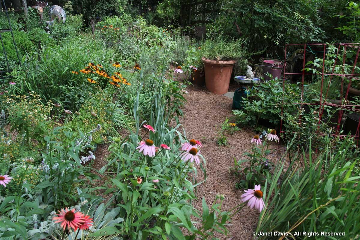 Peg Bier-Deeproof veggie garden