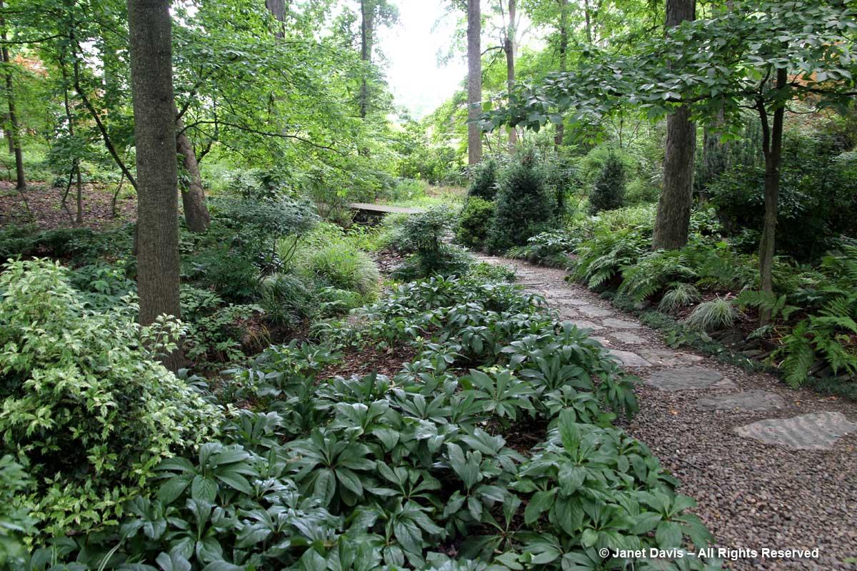 Peg Bier-Flagstone path