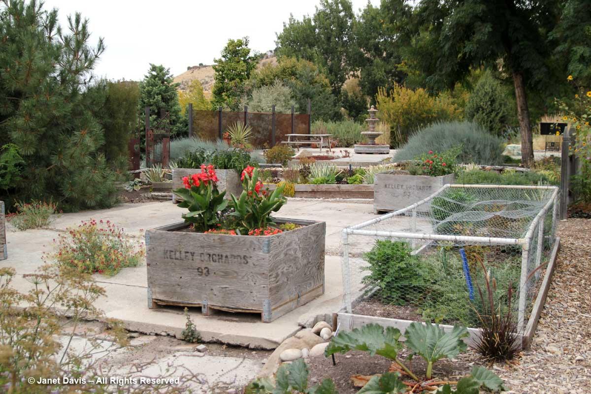 Vegetable gardenprotective cagesIdaho Botanical Janet Davis