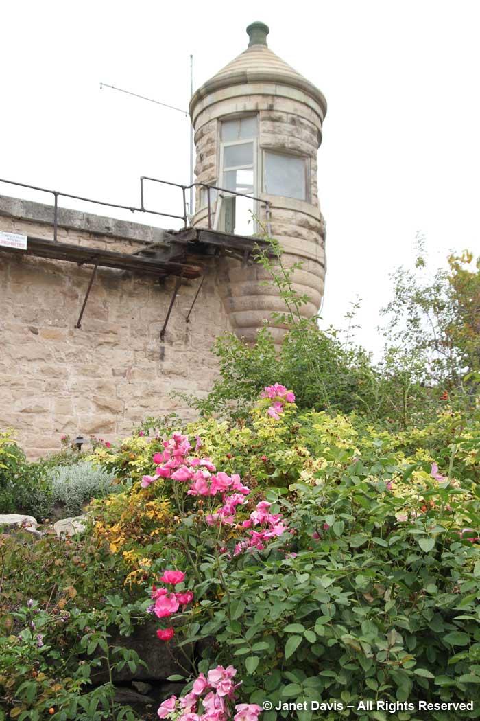 Watchtower-Idaho Botanical