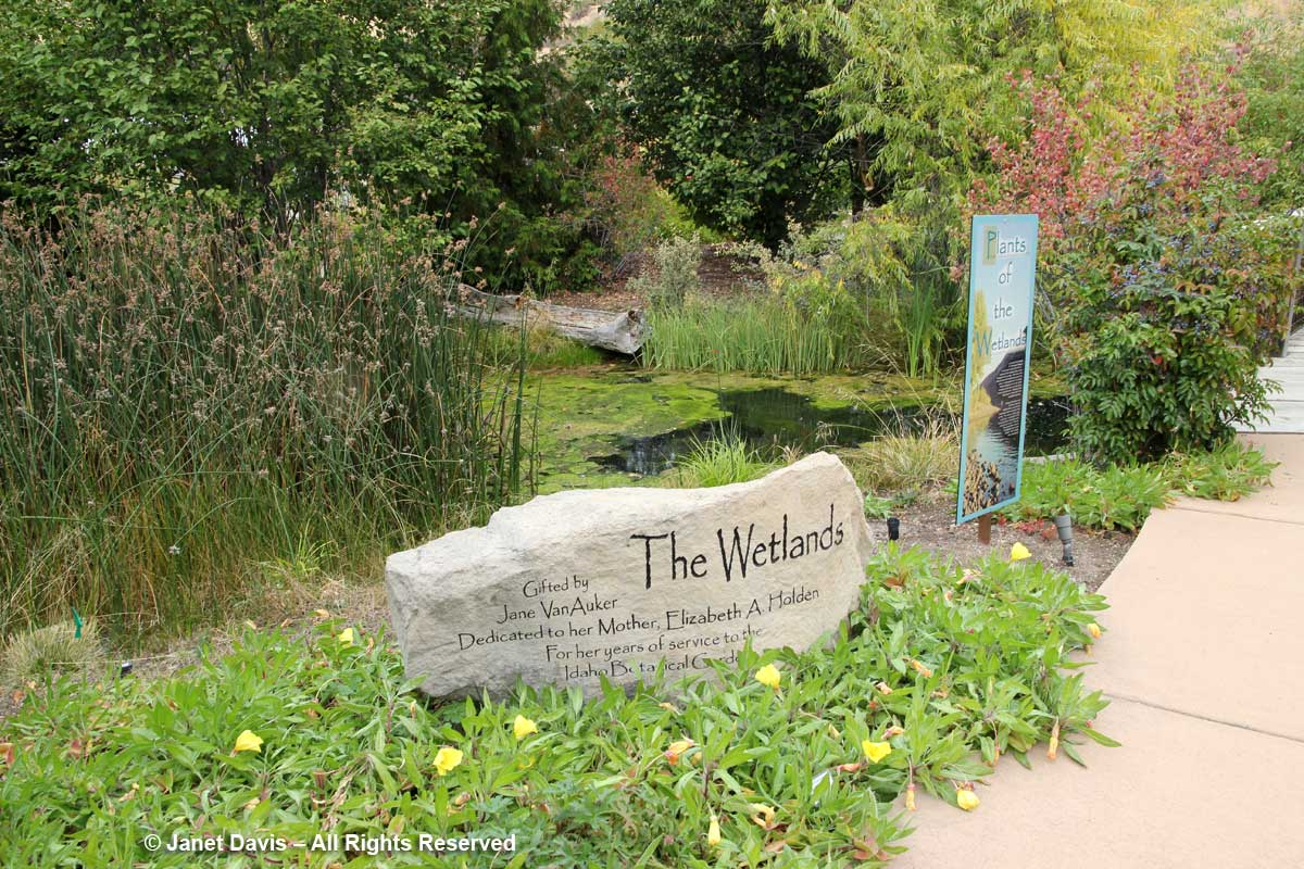 Wetlands Garden-Idaho-Botanical