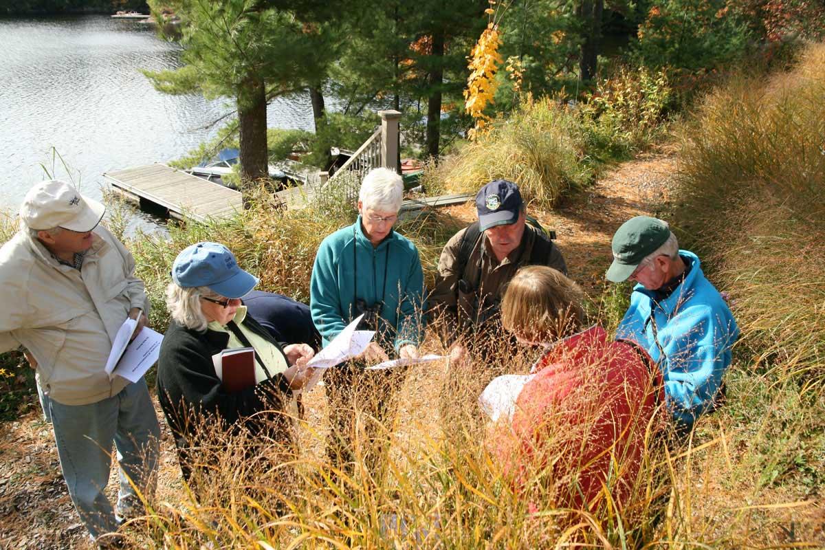 2008-Mushroom Lessons-Lake-Muskoka-Bob Bowles