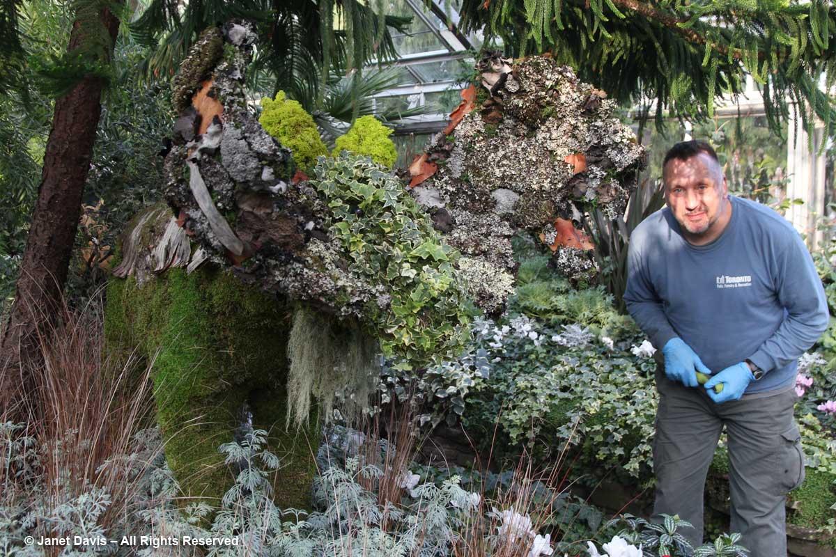 Mikkel Schafer-Allan Gardens-Topiary Moose