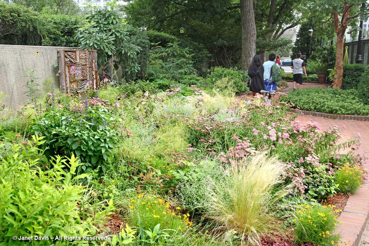 Border & Path-Ripley Garden