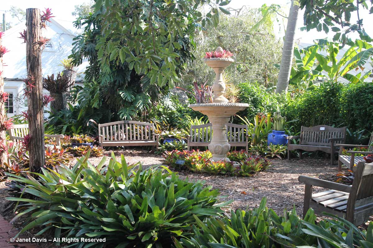 Bromeliad Garden-Marie Selby Botanical Garden